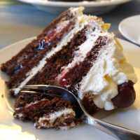 Easiest German Black Forest Cherry Cake