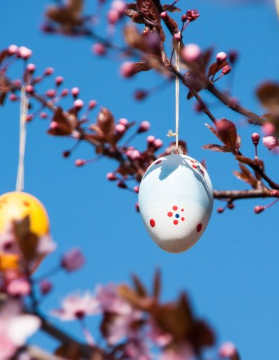 Painted Easter egg hanging from branches of a tree.