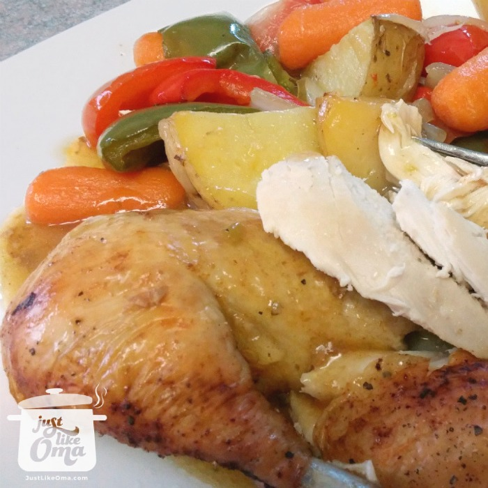 white plate with roasted chicken pieces and roasted mixed vegetables and chicken gravy