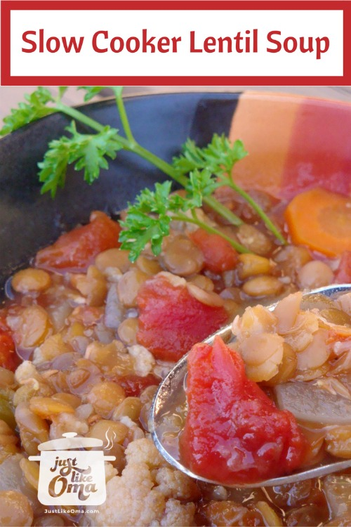 Bowl of slow cooked lentil soup