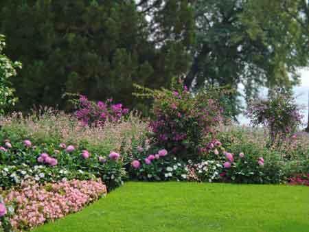 gardens at mainau