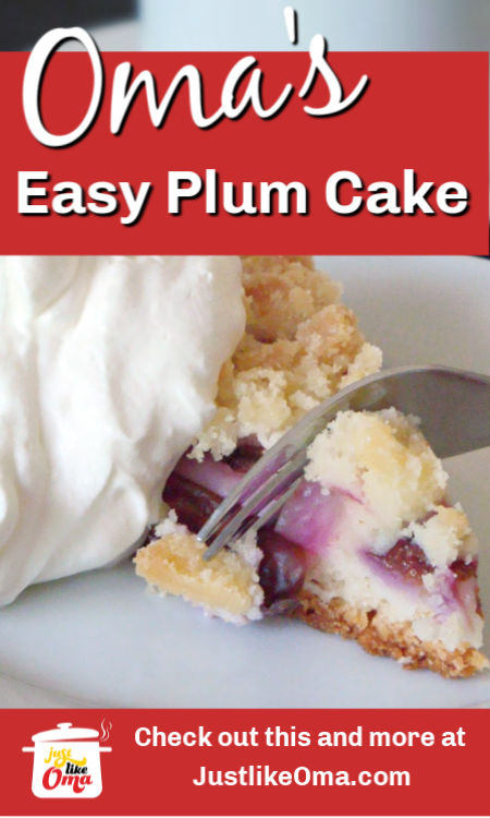 Yummy Plum Streusel Cake made without yeast. So easy and so lecker, made just like Oma.