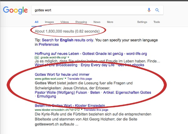 SBI! review screenshot showing google search results for my German website