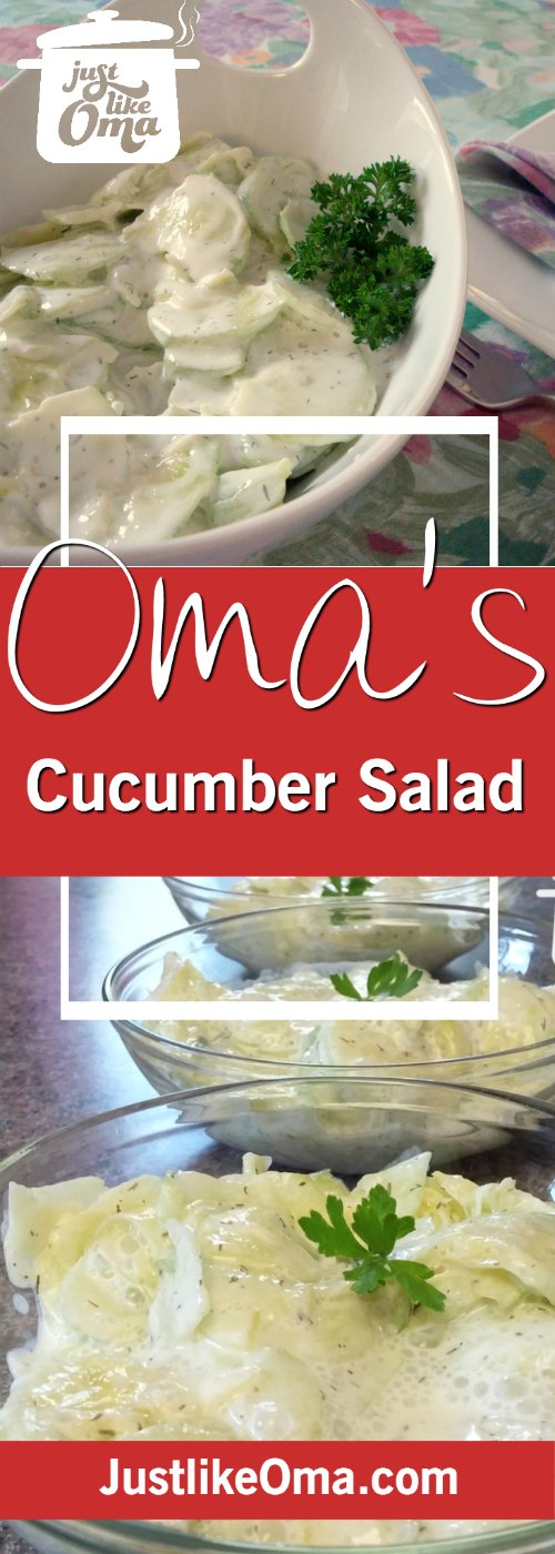 This traditional German Cucumber Salad ( https://www.quick-german-recipes.com/german-cucumber-salad-recipe.html ) is so easy to make, and SO delicious! ❤️ #cucumbersalad #germanrecipes #justlikeoma