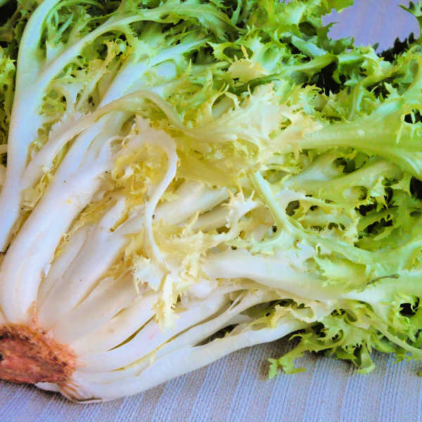 Endive with mashed potatoes.