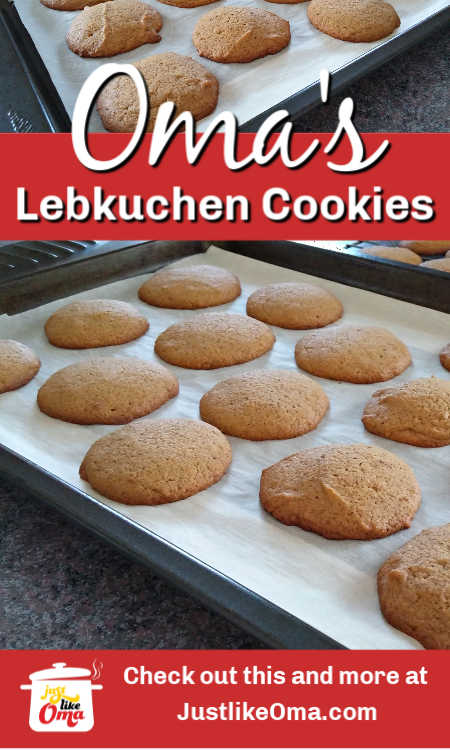 You've got to try these German Gingerbread Cookies, aka Lebkuchen for Christmas-time. What a treat!